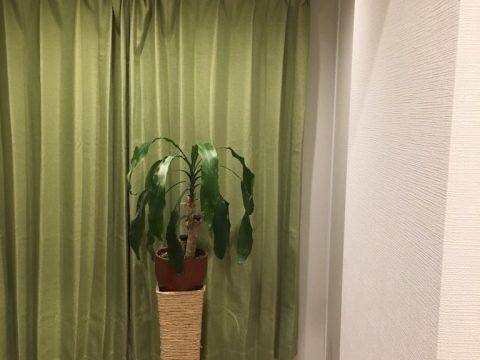 風宏の部屋