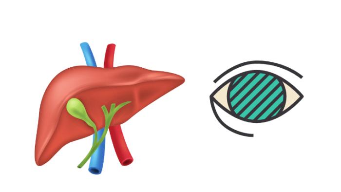 肝臓と緑内障